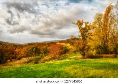 autumnal landscape postcard