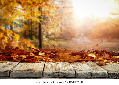 Autumnal leaves on a wooden table in the afternoon day