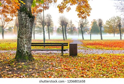 Autumnal morning in old public park in Riga - capital of Latvia and famous tourist city in Baltic region, EC