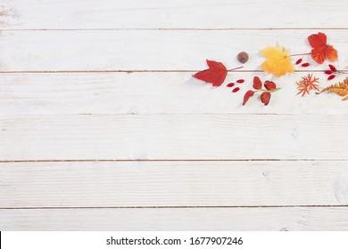 arrière-plan nature bois automnal avec décoration d'automne