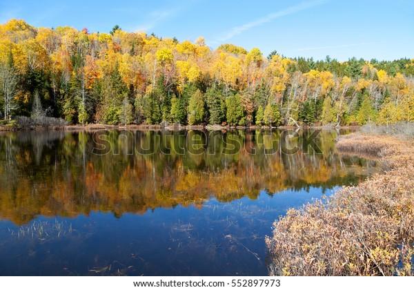 Autumnal panorama in Canada at lake Sacacomie