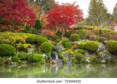 Autumnal pond in Nikko national park, Japan