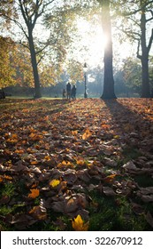 An autumnal scene in an urban London park with focus on the foreground leaves.