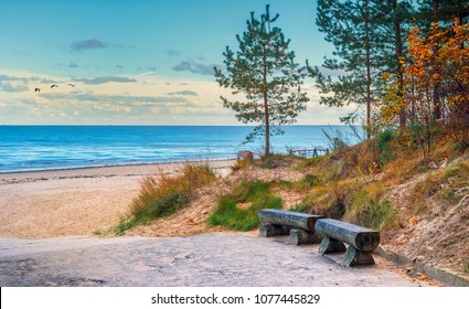 Autumnal scenic view on the Riga gulf (Baltic Sea) from the white dune that is near a village of Dubulti, Jurmala, Latvia, Europe