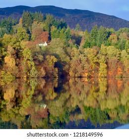 Autumnal tree reflections on Faskally Loch, man made reservoir in Perthshire. Highlands Scotland. Uk. November 2018
