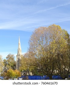 Autumnal trees and spire of St Saviour's Church in Pimlico