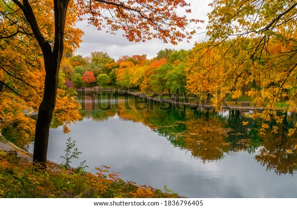 autumnal-view-lafontaine-park-montreal-6