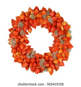 Autumnal Wreath with Physalis and Withywind (Physalis alkekengi and Clematis vitalba) on white
