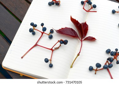 Autumnal writing abstract theme