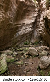The Avakas Gorge Trail