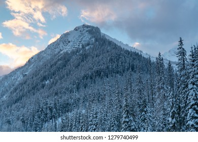 Avalanche Control System and forest in Rogers Pass British Columbia Canada. Cougar corner is a dangerous point on the transcanada highway due to Avalanches.