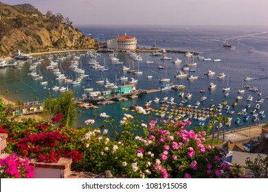 AVALON, CALIFORNIA, USA - JUNE 21, 2009: Flowers, harbor and Casino in town of Avalon, Santa Catalina Island
