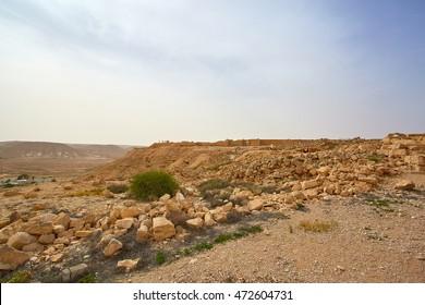 Avdat National Park, Abdah, Ovdat, Obodat, Israel, Middle East
