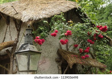 Aveleda,Europe/ Portugal, June 5, 2018  - a house with a triangular thatched roof with a lantern and crimson flowers of roses in the park in summer. An ancient manor of the 11th century, open to touri