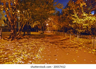 Avenue in city area. Night and autumn.