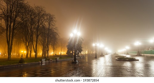 The avenue of city park at night