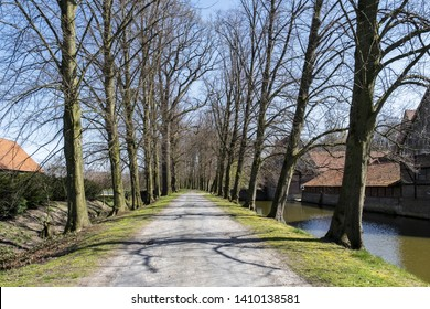 Avenue lined with trees nead Haus Runde