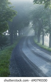 Avenue Nordic