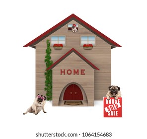 average middle class pug dog familiy, sitting down in garden with house sold sign at new home, isolated on white background