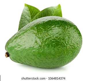 Avocado with leafs isolated on white