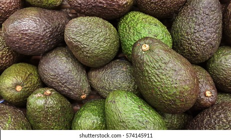 Avocado also refers to the Avocado tree's fruit, which is botanically a large berry containing a single seed. Avocados are very nutritious and contain a wide variety of nutrients.