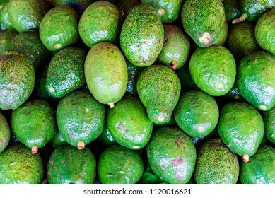 Avocado texture background. health food for background.