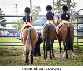 awaiting to participate in the horse events, country show