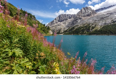 Awesome alpine highland in sunny day. Colorful spring scene. Summer view of Fedaia lake and Marmolada mountain. Gran Poz location, Trentino-Alto Adige. Italy,