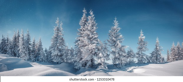 Awesome alpine highlands in sunny day. A magnificent panorama of the mountains With snowcowered trees under Sunlight sparkling in the snow. Amazing Winter Landscape. Christmas background. Postcard