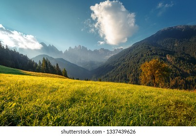 Awesome alpine highlands in sunny day. Alps mountain meadow tranquil summer view. Landscape with Fresh grass, perfect sky and rock mountains Dolomites under bright sunlight. Amazing Nature Scenery.