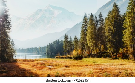 Awesome alpine highlands in sunny day. Scenic image of fairy-tale Landscape in sunlit with Majestic Rock Mountain on background. Wild area. Hintersee lake. Germany.  Bavaria, Alps. Creative image