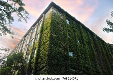Awesome building in green plant at the city of Beijing.