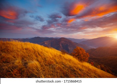 Awesome evening landscape are illuminated by the sunset. Photo of colorful cloudy sky. Location place of Carpathian mountains, Ukraine, Europe. Attractive picture of a countryside. Beauty of earth.