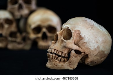 Awesome pile of skull on black background, Still Life style and Select focus specifically spot for background