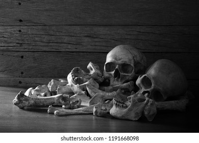 Awesome pile of three skull and bone on dark background in the morgue / Still Life style selective focus and space for texts, Adjustment color black and white image