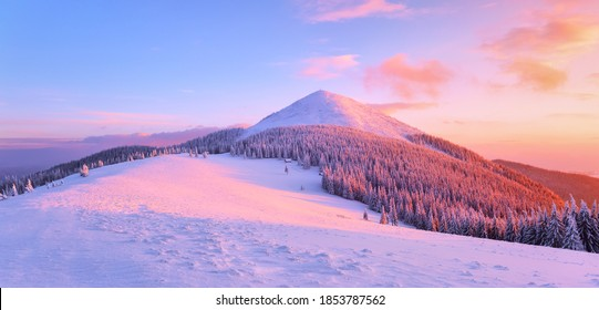 Awesome sunrise. High mountains with snow white peaks. Winter forest. A panoramic view of the covered with frost trees. Natural landscape with beautiful sky. The revival of the planet.