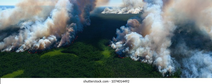 Awful wildfire from the bird's eye view