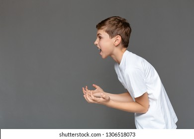 Awkward age. Angry emotional boy screaming and gesturing with hands in air, side view, gray studio background with free space