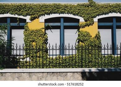 Awsome green window in France