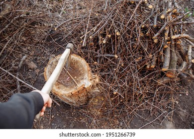 Ax in hand. A man's hand holds an ax. Ax in a wooden deck. Selective focus on a metal ax. There is a picnic brush nearby.