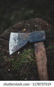 Ax on the stump close up