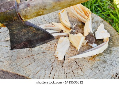 Ax in a piece of wood and slivers, woodworking concept in simple conditions, natural colors