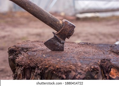 Ax stuck in the stump. Ax and ax handle. Sharp ax to chop wood