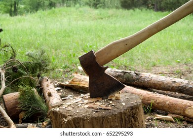Ax in stump on clearing in wood at sun summer day