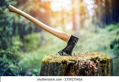 Axe cut in the chopping block in forest  background. Lumber jacks wood cutting work tool.