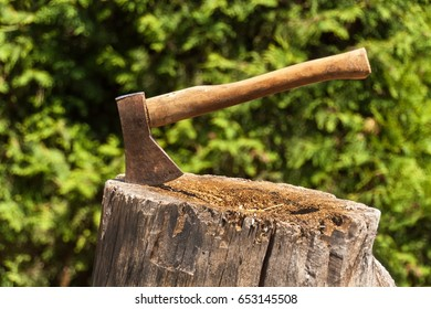 Axe in stump. Axe ready for cutting timber.Woodworking tool. Lumberjack axe in wood, chopping timber. Travel, adventure, camping gear, outdoors items