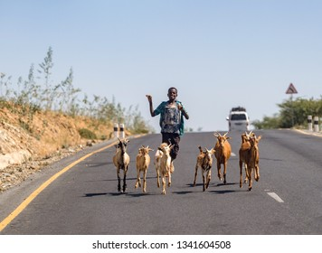 Axum/Ethiopia-02/05/2019: Ethiopian boy runs on the road with his goats