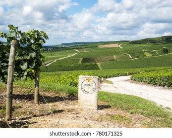 Ay, Champagne, France - 11 August 2014:  Hills covered with vineyards in the wine region of Champagne, France. Moet & Chandon