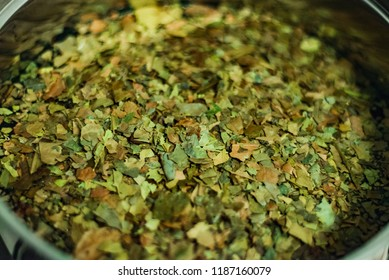 Ayahuasca Guayusa tea leaves drink from amazon rainforest, preparation brewing in a kettle, close-up