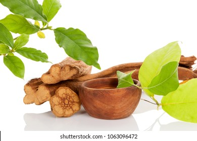 Ayahuasca medicine. Banisteriopsis caapi wood, psychotria leaves and ayahuasca brew in wooden bowl isolated on white background. Tradtional plant medicine.